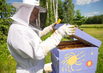 Mesilas - suvi 2020